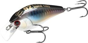 LUCKY-CRAFT-JAPAN-NW-Amigo-13-LC-RTO-2-0-TO-Shad
