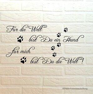 Wandtattoo-Fuer-die-Welt-bist-du-ein-Hund-Hundename-70x35cm-Sprueche-Z393a