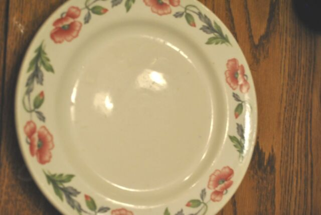 """Vintage Mayer China 9 1/2"""" Dinner Plate--Cosmos Red & Green Flower Pattern-heavy"""