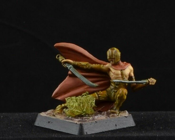 Painted Skarrd Blood Reign from Dark Age Games CoolMiniOrNot CMON assassin D&D