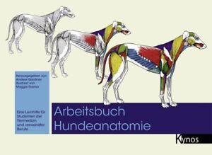 Arbeitsbuch-Hundeanatomie-von-Andrew-Gardiner-Maggie-Raynor-Portofrei