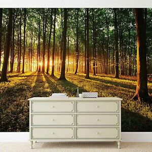 Ordinaire Image Is Loading Forest Wallpaper Mural For Bedroom Amp Living Room