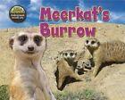 Meerkat's Burrow by Dee Phillips (Hardback, 2014)