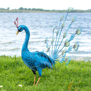 Large-55cm-Exotic-Blue-Peacock-Metal-Garden-Ornament-Decorative-Sculpture-Statue