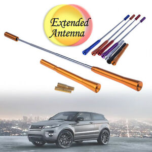 Details about Universal Car Roof Aerial Antenna Mast Flexible Extend Bee  Sting Decor New