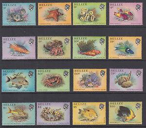 Belize-Sc-699-714-MNH-1984-Fish-definitives-complete-set-of-16-VF