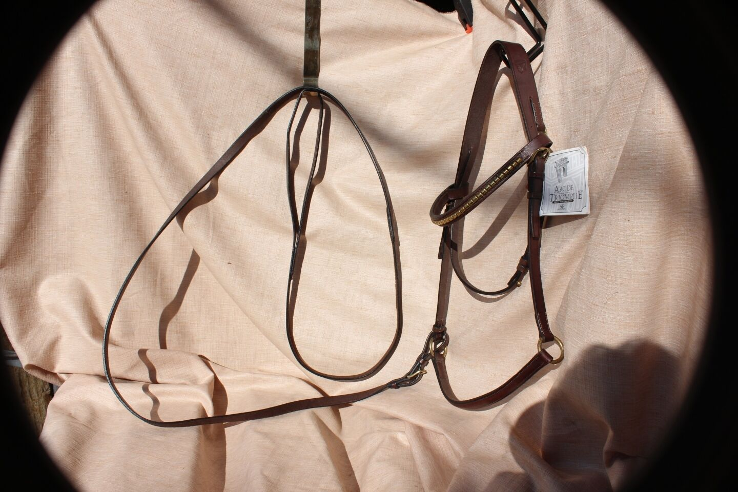 18-5 New Arc de Triomphe brown presentation bridle with lead full size