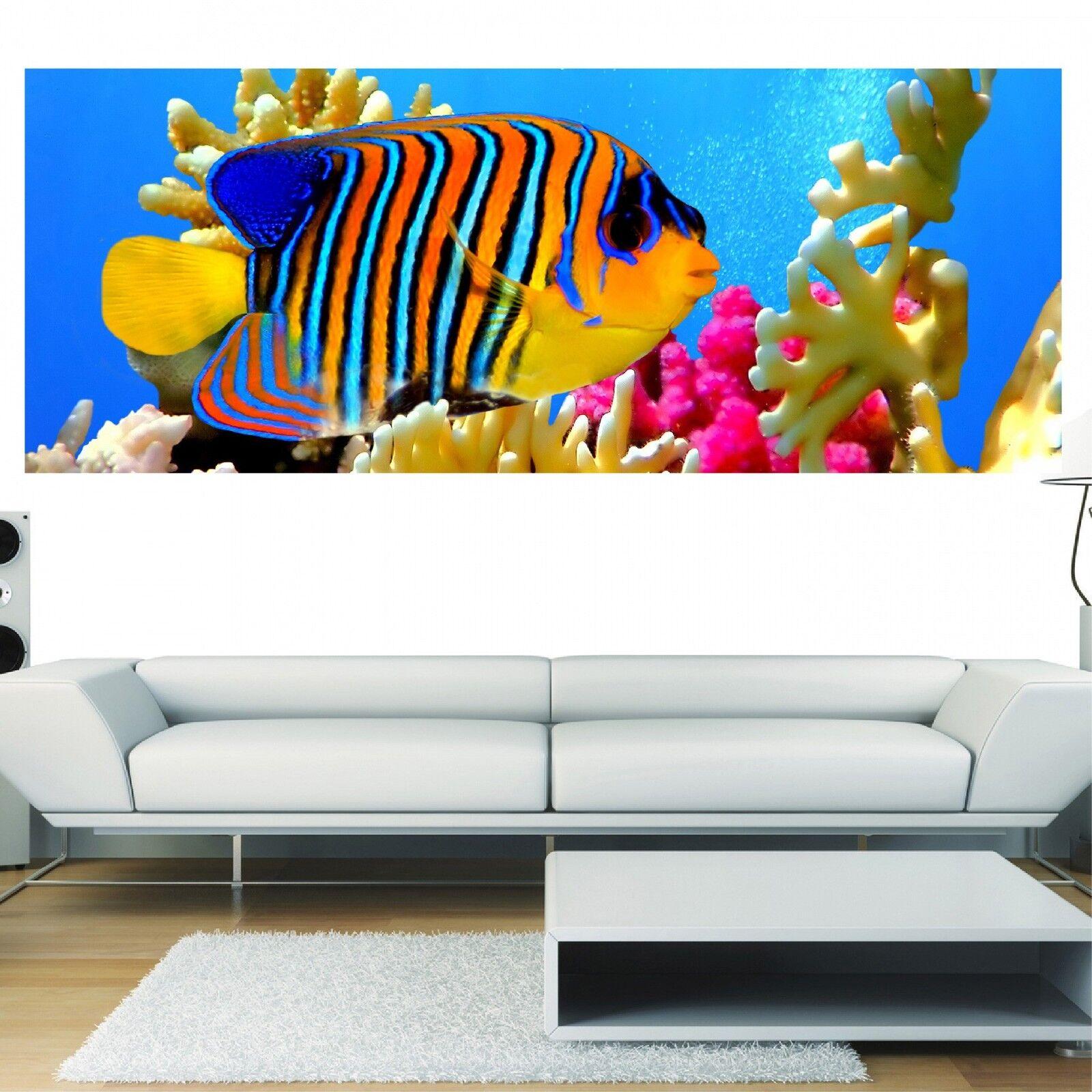 Papel pintado panorámica peces exótico 3613 Arte decoración Pegatinas