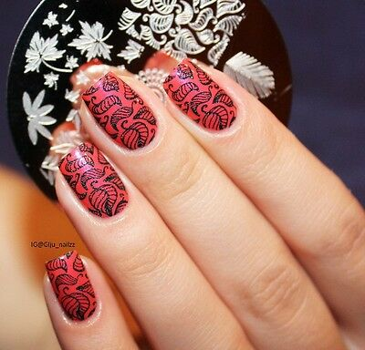 Nail Art Stamp Template Image Stamping Plate Leaves Pattern BORN PRETTY 19
