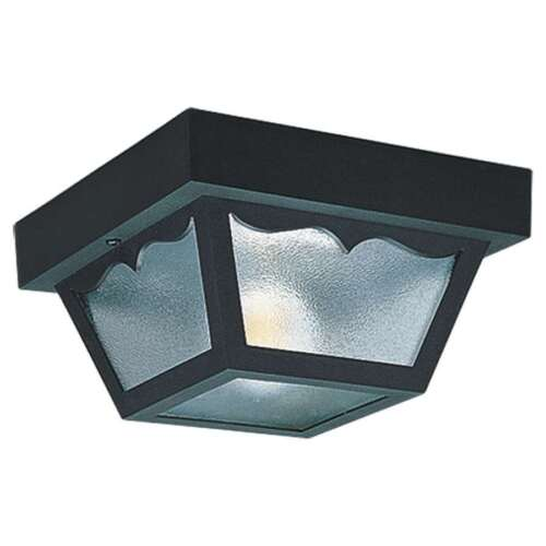 7569-32 Sea Gull Lighting Two-Light Outdoor Ceiling Fixture in Clear