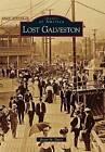 Lost Galveston by Brian M Davis (Paperback / softback, 2010)
