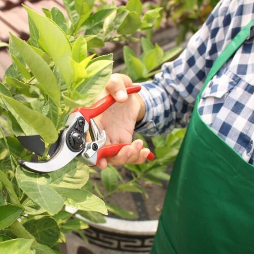 "8/"" Heavy Duty Prunning Shears Garden Secateurs Pruners Cutter Hedge Bush Soft"
