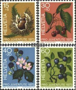 Schweiz-1013-1016-kompl-Ausgabe-gestempelt-1973-Pro-Juventute