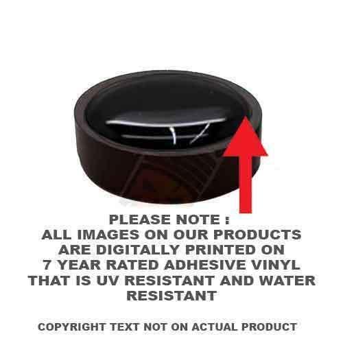 4 Black License Plate Frame Tag Screw Snap Cap Covers ORANGE PUNISHER SKULL H076