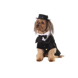 Dapper Hound Tuxedo