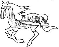 Mounted Rubber Stamp, Western Stamps, Horse, Scenic Stamps, Mustang, Wild Horses