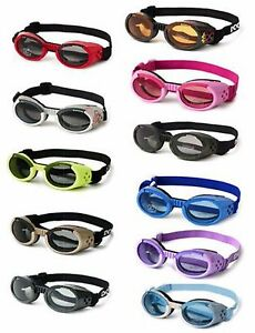 Doggles ILS Authentic UV eye protection for dogs
