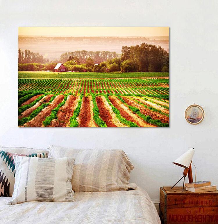 3D Ordentlich Felder 33 Fototapeten Wandbild BildTapete Familie AJSTORE DE