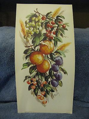 Plums  Litho Print Grapes Oranges Fruit Craig USA