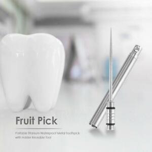 Outdoor-Tragbare-Titan-wasserdicht-Metall-Zahnstocher-Obst-Pick-Zahn-Zaehne-Pflege