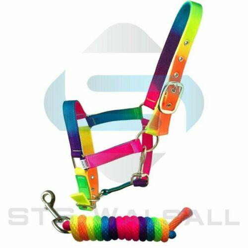 Sheldon Signature Rainbow Headcollar /& Rope Set