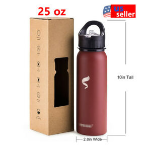 Sports-Water-Bottles-25oz-Stainless-Steel-With-Straw-Lid-And-Portable-Handle