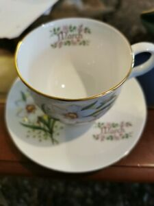 Tea Cup of the Month - MARCH - Sadler Tea Cup & Saucer Bone China England March