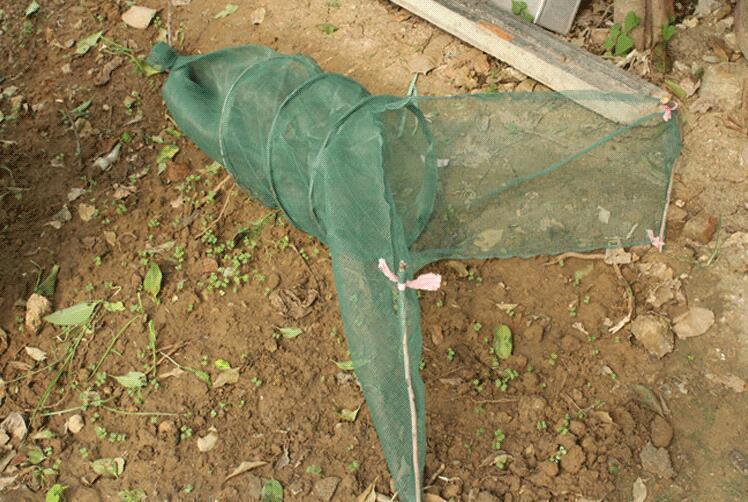 Verveux à deux ailes maille 2mm lg 1.80 pêche mètres environ pour pêche 1.80 scientifique. 68aabf
