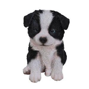Sheepdog-Collie-Puppy-Pet-Pal