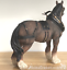 Large-Shire-Cart-Heavy-Horse-in-harness-ornament-figurine-Leonardo-gift-boxed miniatuur 6