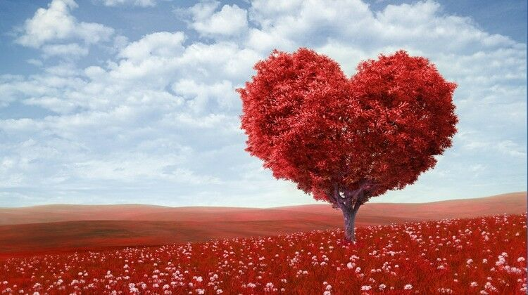Huge 3D rot Heart-Shaped Tree Wall Paper Wall Print Decal Wall Deco Indoor wall