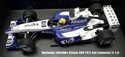 WOW!!!FORMULA 1 F1 WILLIAMS BMW FW25 sign Ralph Schumacher Race Car nose Style