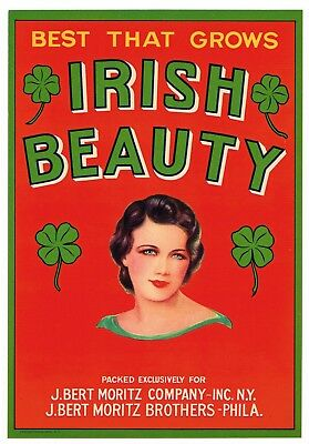 IRISH BEAUTY MELON CRATE LABEL Philadelphia /& New York ORIGINAL 1930/'S Shamrocks