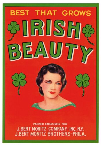 GENUINE CRATE LABEL IRISH BEAUTY LASS PHILADELPHIA NEW YORK 1950S IRELAND