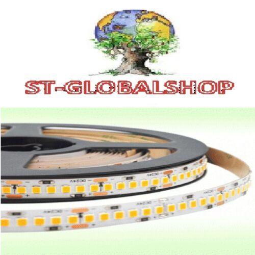LED strip Strip Cold White Professional 24v 22w//mt 120 LED//MT 95 CRI
