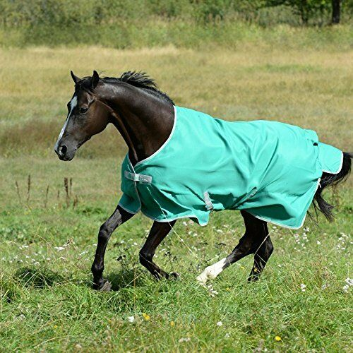 Bucas Freedom Turnout Light 0G Pony – Pine Green 51  4'3  SK180 BB 09