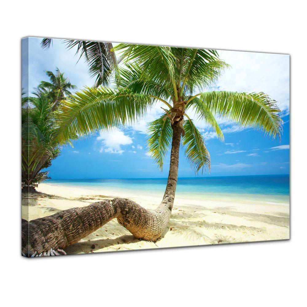 Tela-Spiaggia Tela-Spiaggia Tela-Spiaggia in paradiso 6fc2e1
