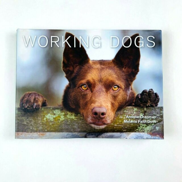 Working Dogs by Andrew Chapman, Melanie Faith Dove (Hardback, 2013)