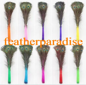 Mint Green Ostrich Feathers 10-12 inch 12 Pieces GA, USA