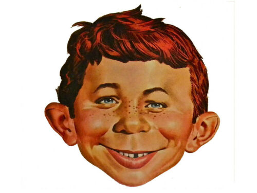 Alfred E Newman 24x36 inch rolled wall poster