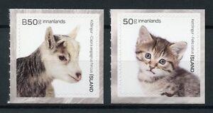Islanda-2017-Gomma-integra-non-linguellato-GIOVANI-CAPRE-ANIMALI-DOMESTICI-GATTI-GATTINI-2v-Set