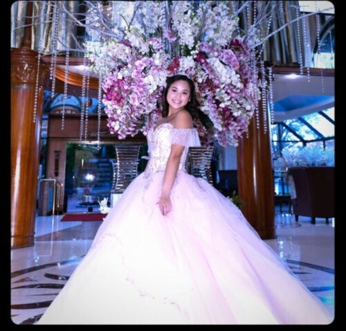 Sweet Sixteen Blush Pink Gown