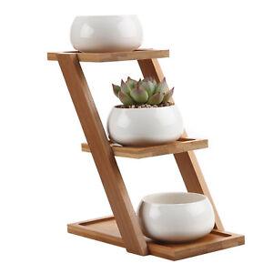 """3x T4u 3.25"""" Ceramic White Succulent Cactus Plant Flower Pots With Bamboo Shelf Avoir Un Style National Unique"""