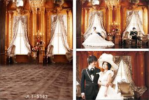 10X10FT Vinyl photography Background Backdrop studio photo props Palace 5363