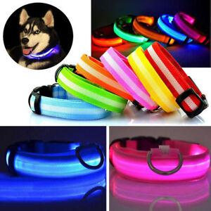 Charmant Del Dog Pet Collar Clignotant Lumineux Sangle Réglable Nylon Tag Light Up Bande Uk-afficher Le Titre D'origine Forte RéSistance à La Chaleur Et à L'Usure