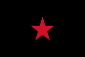 EZLN Zapatista Army Flag 5ft x 3ft