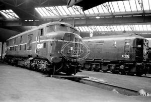 PHOTO-BR-British-Railways-Diesel-Loco-10001-in-1962-at-Willesden
