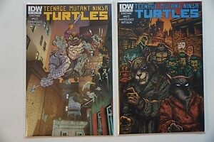 Teenage-Mutant-Ninja-Turtles-TMNT-39-2014-IDW-BOTH-Cover-A-amp-B