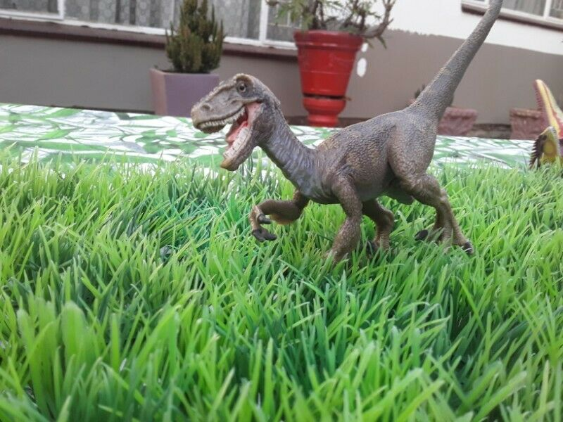 Toy Dinosaurs and Plastic Plants