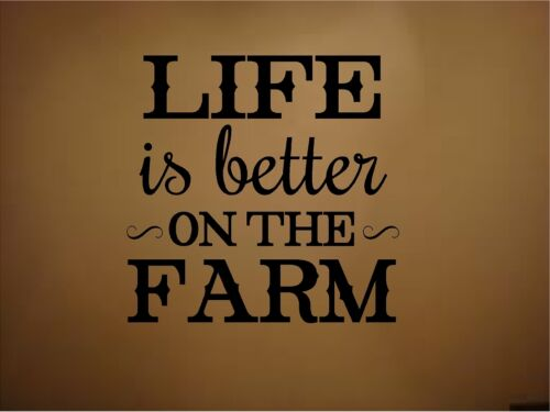 LIFE IS BETTER ON THE FARM VINYL WALL DECAL LETTERING WORDS HOME DECOR